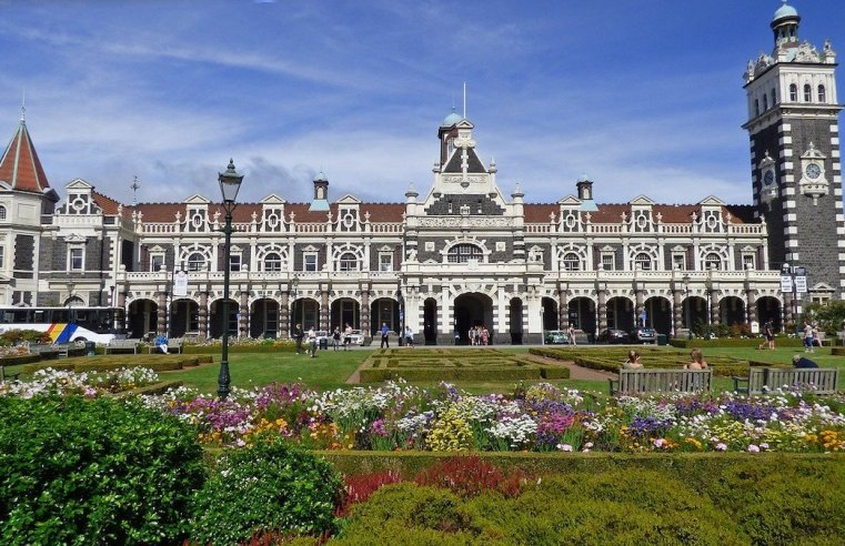 Bucket List: Top 15 Best Things to Do in Dunedin, New Zealand