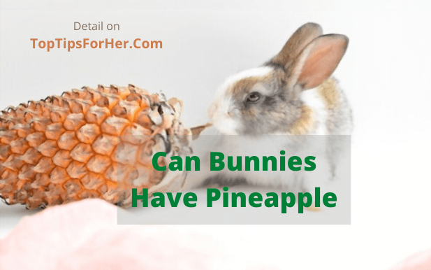 can rabbits eat pineapple skin or leaves