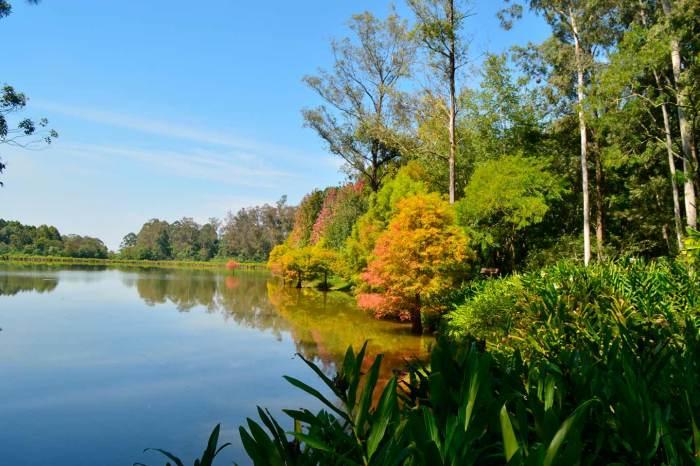 Parque Witeck e Aqueduto Candelária