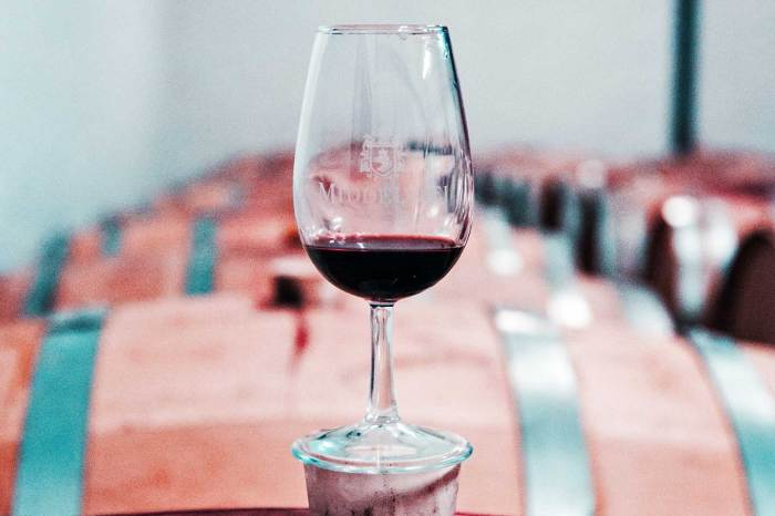 Charmes Da Serra – Vinhos e Caminhos De Pedra