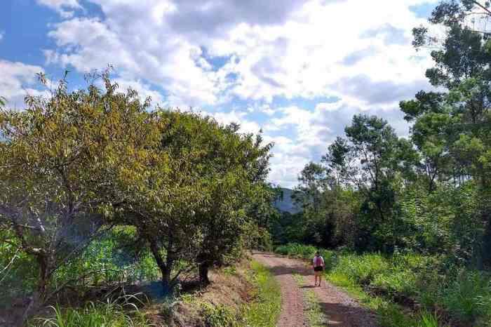 Caminhada e Trilha – Sítio Grünes Paradies – Nova Petrópolis