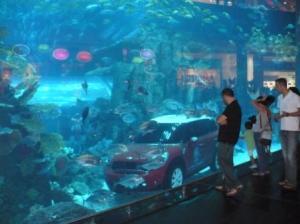Миникупер в аквариуме