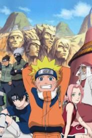 Naruto Saison 1 VF