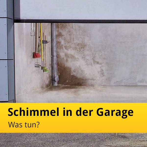 Feuchte Garage Mit Schimmel In Der Garage  Was Tun