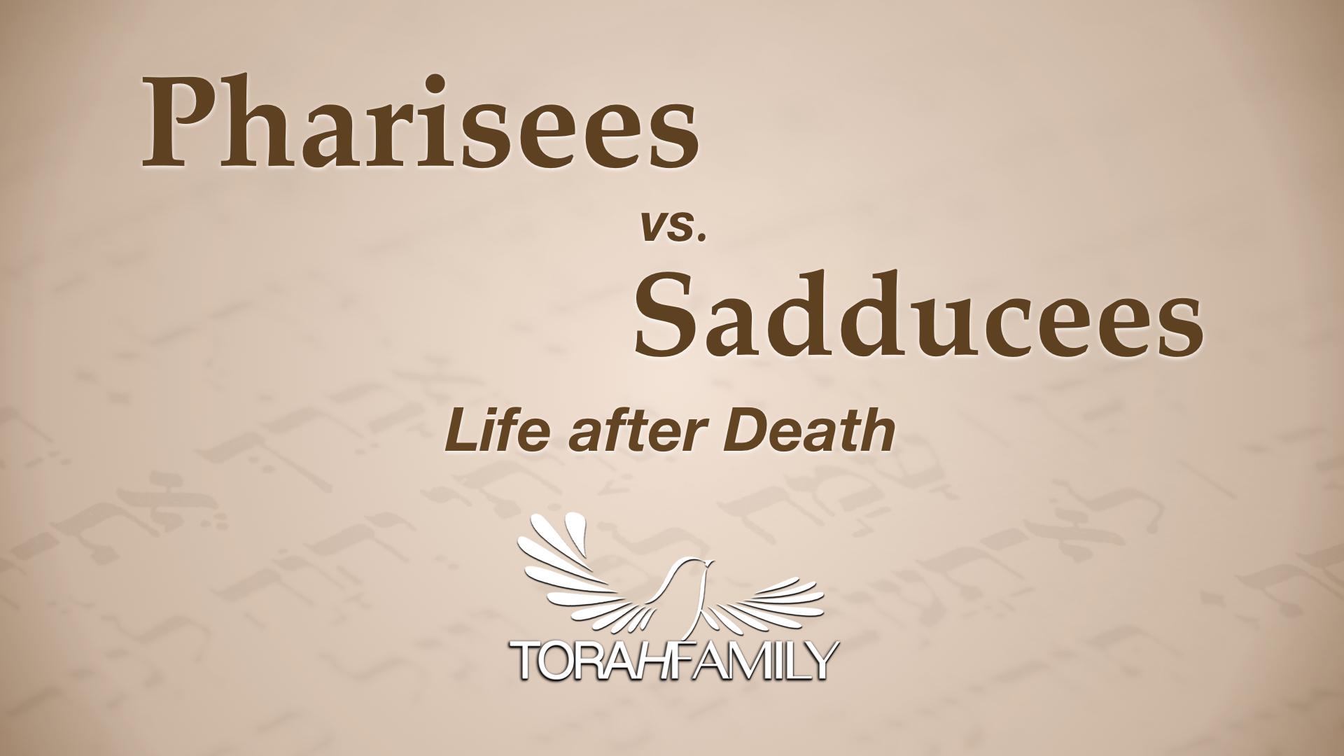 Pharisees vs Sadducees  Life after Death  Torah Family