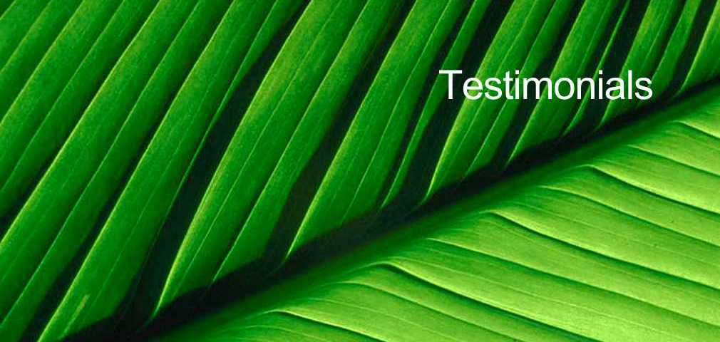 Testimonials and reviews for acupuncture, the Torbay Acupuncture Centre, Torquay, Devon.
