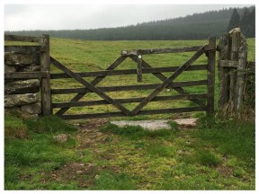 The very rare four and a half barred gate