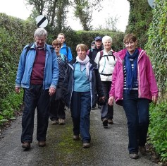 Bluebell Walk - Saturday Walkers