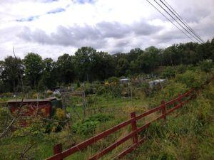 Allotment Garden Skarpnack