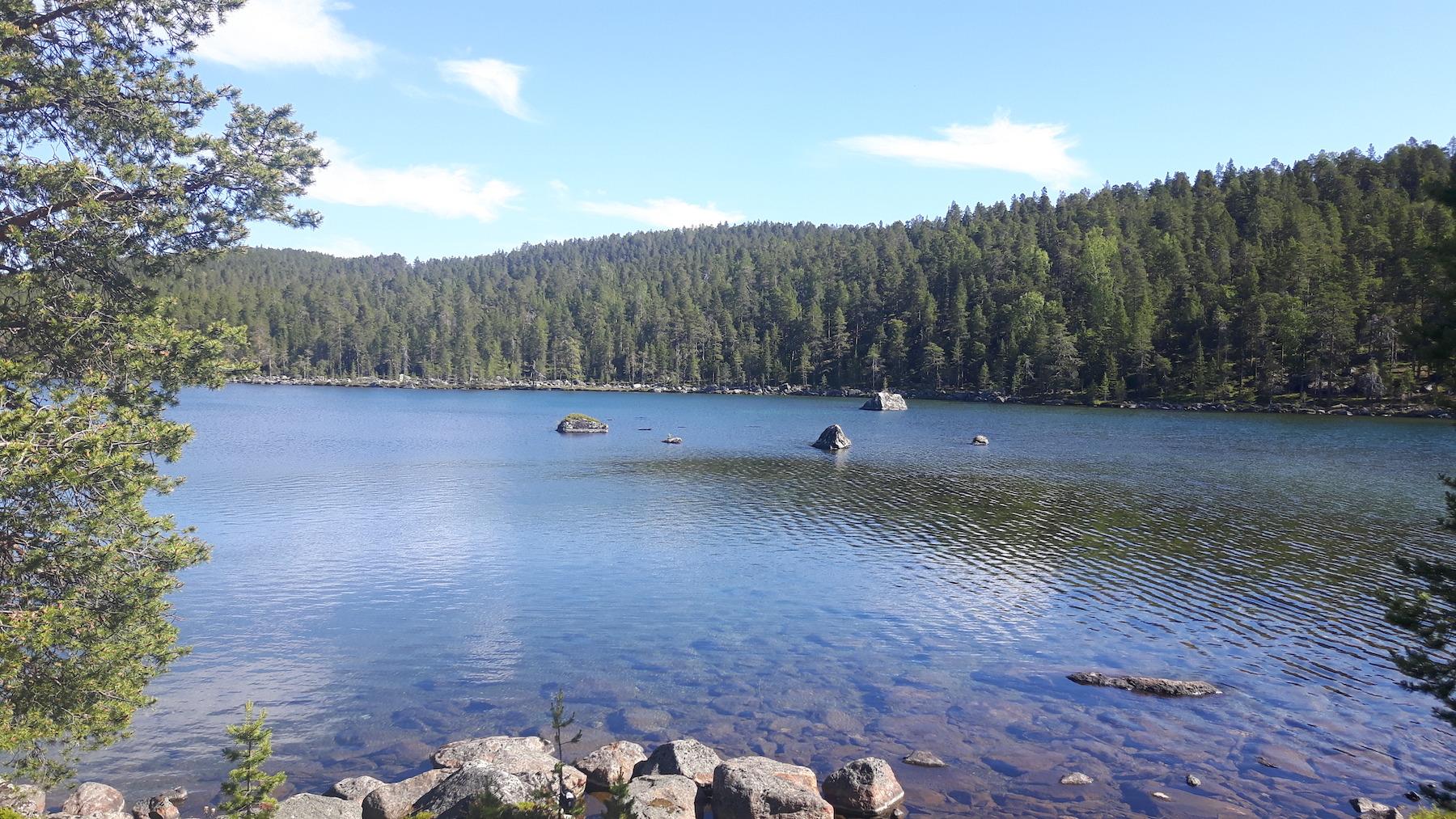 Finish Lake Near Ivalo