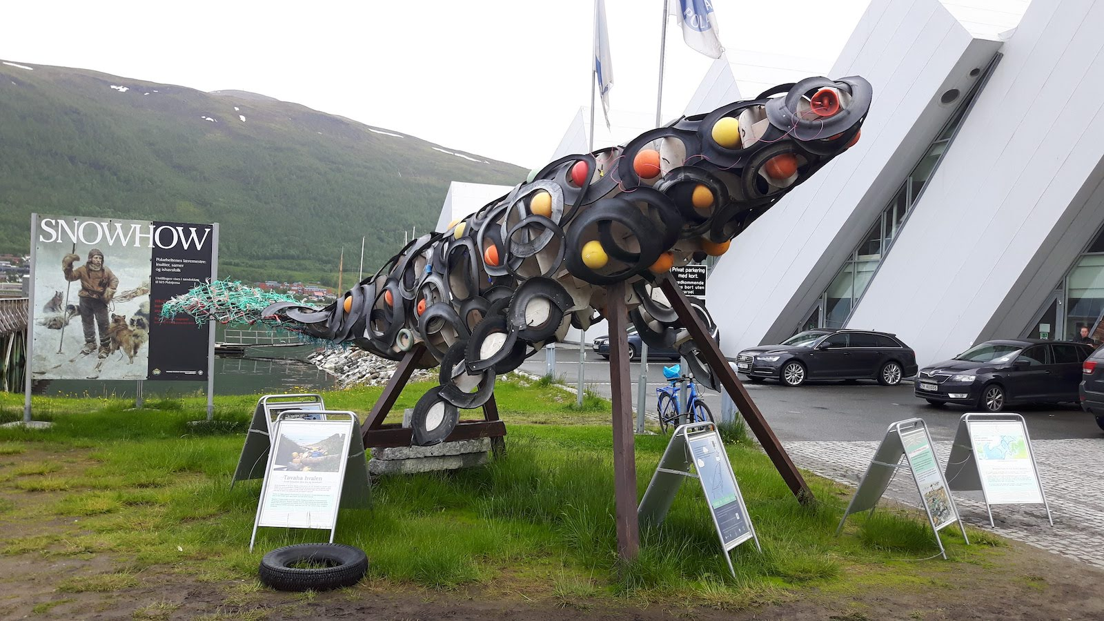 Plastic filled whale Tromso Norway
