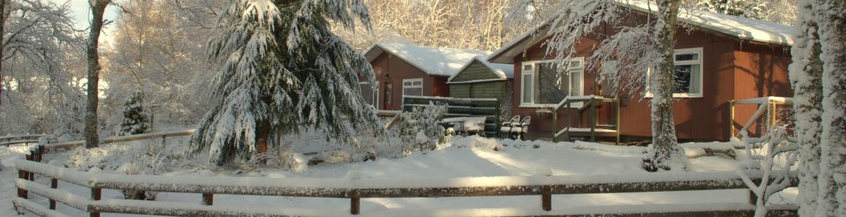 winter-topbar