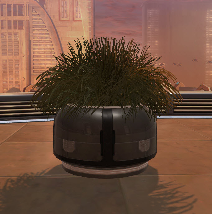 swtor-executive's-shrub-2