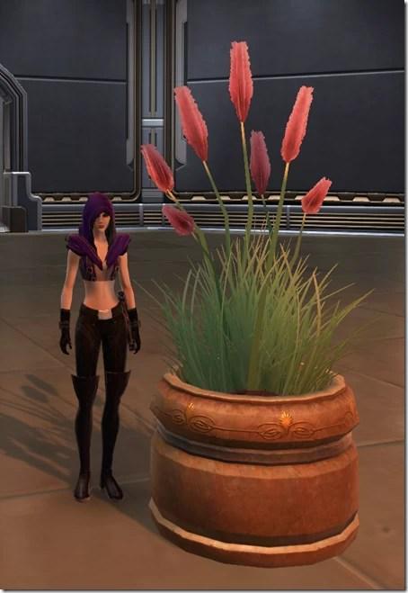 Weed Flowers 2