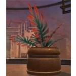 Potted Plant: Yavin Jungle Fan