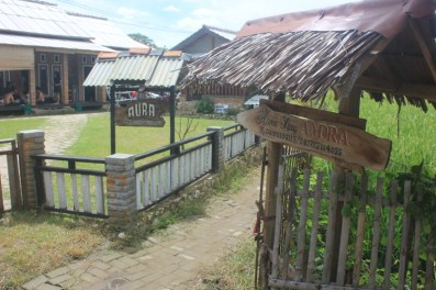 Welcome to Andra Homestay
