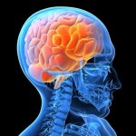 ALS(筋萎縮性側索硬化症)とは一体どんな病気?