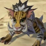Forest Nekarr Cat