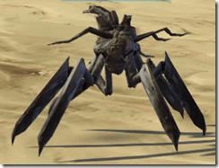 Makrin Creeper Seedling - Front