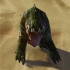 Greenback Exoboar