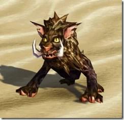 Savannah Nekarr Cat - Front