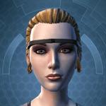Counsular Expert - Head