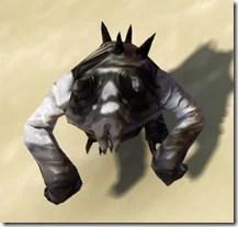 Masked Lobel Front