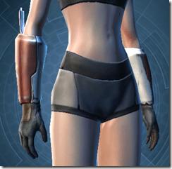 Shield Warden Female Gauntlets