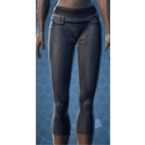Synthleather Leggings (Imp)