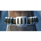 RD-13A Raider Belt (Pub)