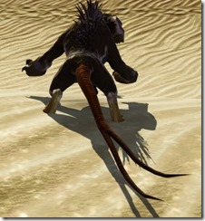 Nexu Desert Back