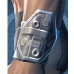 Wraidskin Wristguards [Force] (Imp)