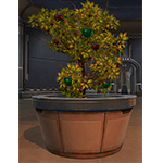 Life Day Medium Potted Tree*Life Day Bundle / Cartel Market