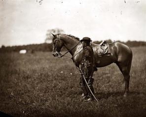 horse-war-jpg