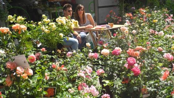 Con Flor 14 il centro di Torino diventa green  Repubblicait
