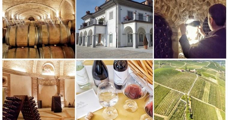 北イタリアのワイナリー巡り「カッシーナ・キッコ(CASCINA CHICCO)Winery to visit in Piedmont!!