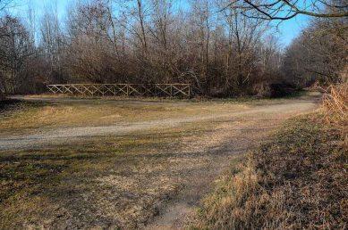 Quadrivio di sentieri nel parco