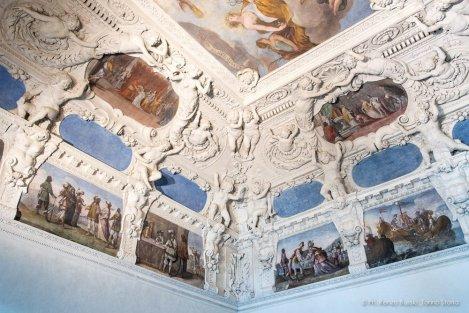 Torino, Interni del Castello del Valentino-5332