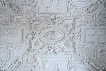Torino, Interni del Castello del Valentino-5403