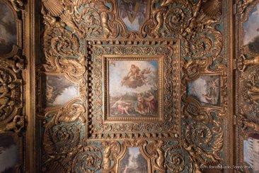 Torino, Interni del Castello del Valentino-5549