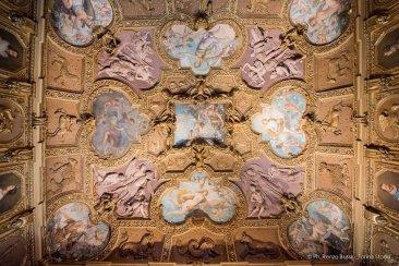 Torino, Interni del Castello del Valentino-5561
