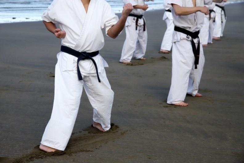 Kuda - Kuda Netral Karate