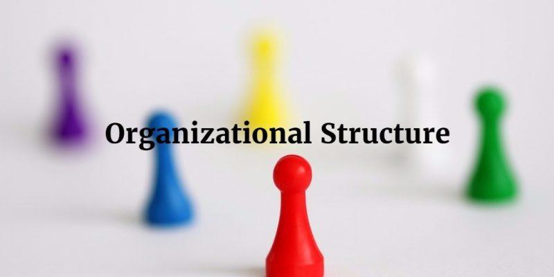 Memahami Jenis Jenis Struktur Organisasi