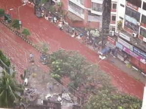 dhaka-blood-2