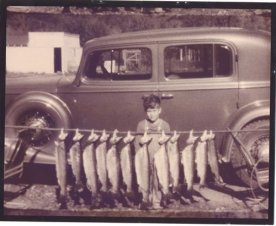 Bob-Nauheim-fish-string