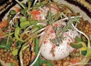 半熟卵とレンズ豆のサラダ