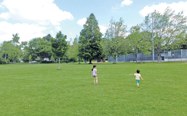 広い公園で子供がのびのび遊べるのはトロントの大きな魅力のひとつ
