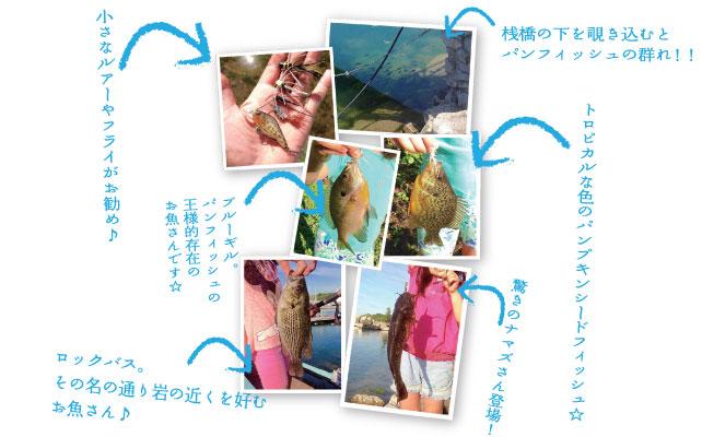 ontario-fishing160701