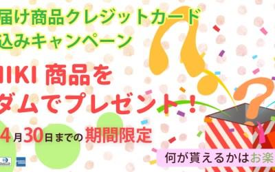 スライド制作:MOMIKI様02