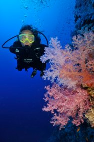 Diver and Soft Coral 5 (681x1024)
